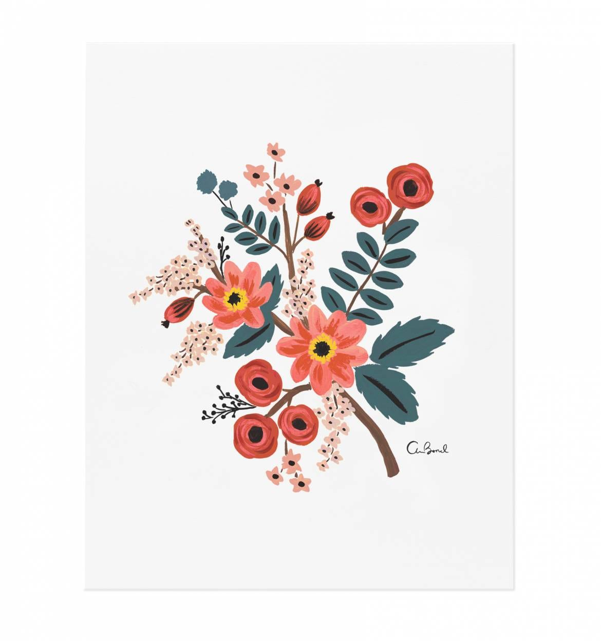 coral-botanical-illustrated-art-print-01_1
